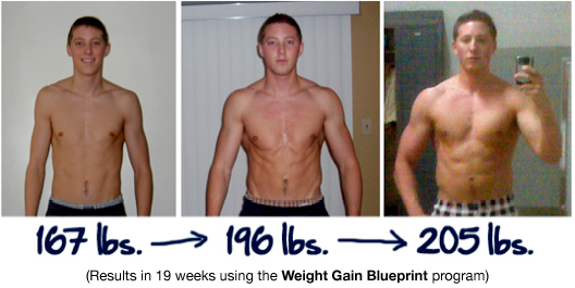 weight gain program jeff masterson