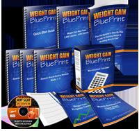 weight gain blueprint program