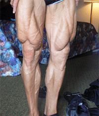 muscular legs
