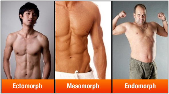 Somantotype Men